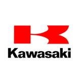 Kawasaki motori